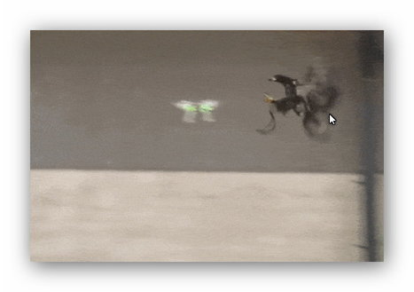 Vidéo : aux Pays-Bas, la police dresse des aigles à intercepter des drones