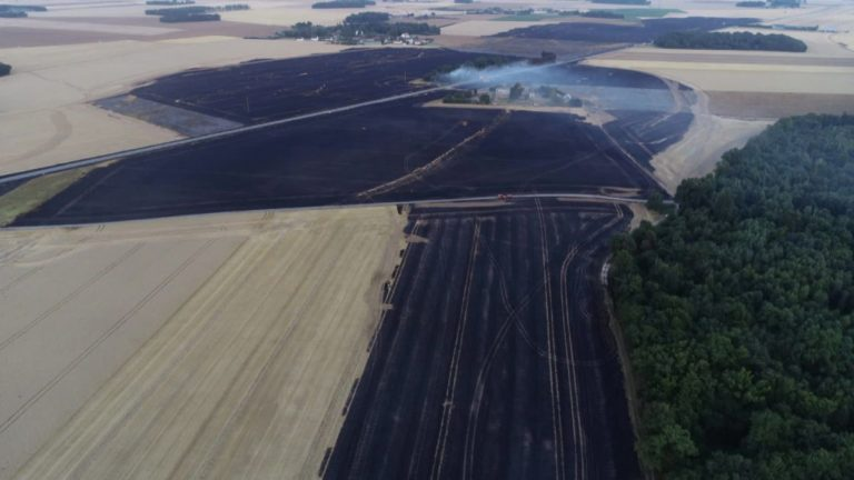 VIDEO – Sécheresse dans l'Eure : des champs de céréales brûlent