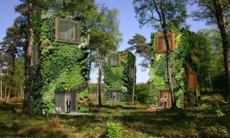 Voici le projet OAS1S, le quartier vert 100% autonome !