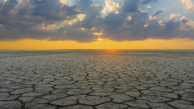 5 actions climatiques à notre portée pour atteindre un monde #FaimZéro