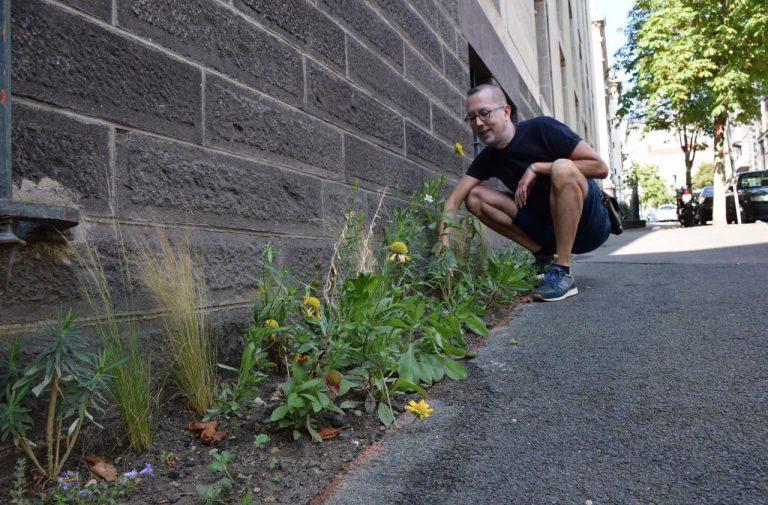 A Clermont-Ferrand, les habitants vont bénéficier d'un permis de végétaliser