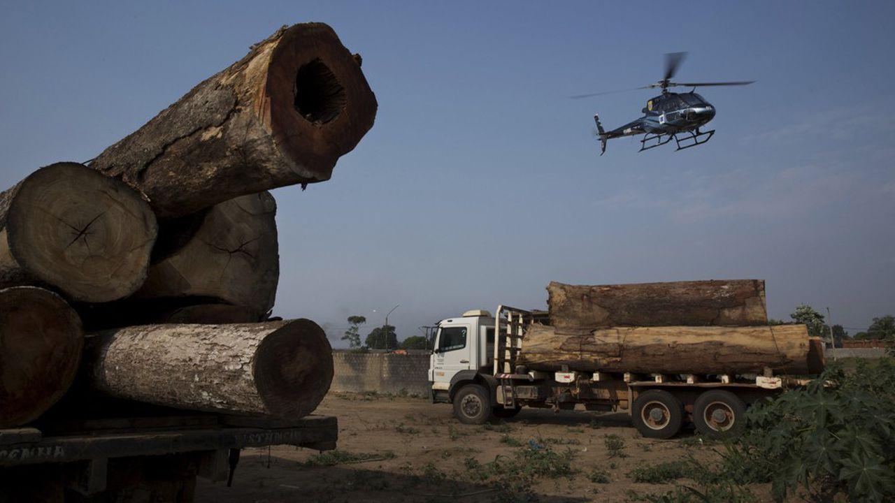 Brésil: comme promis, Bolsonaro accélère la déforestation en Amazonie