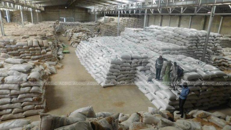 «C'est un scandale» : au Cameroun, du riz local invendu au profit du riz étranger