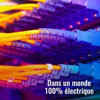 Dans un monde 100% électrique