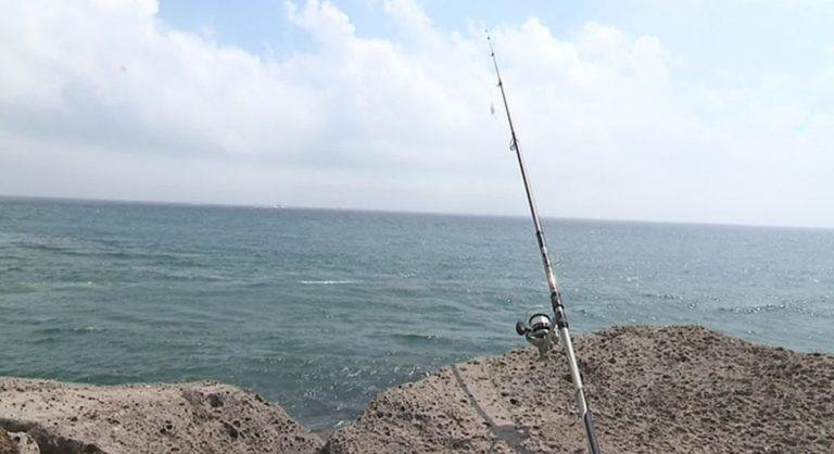 Hérault : au Grau d'Agde, les pêcheurs ont du mal à trouver du poisson