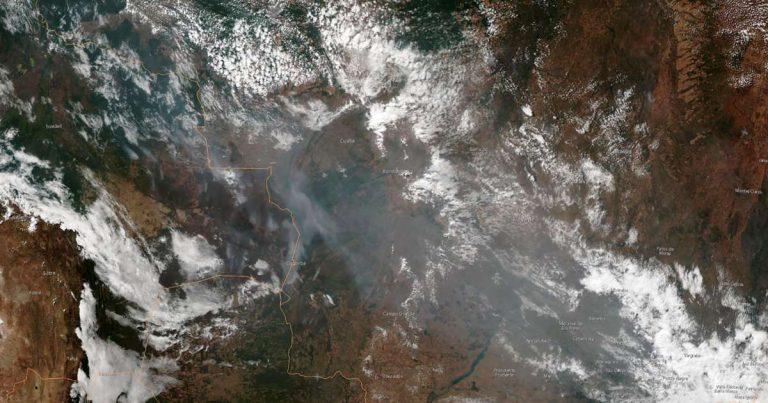 «Nous pouvons encore éviter un effondrement fonctionnel de l'Amazonie, mais la solution doit être rapide»