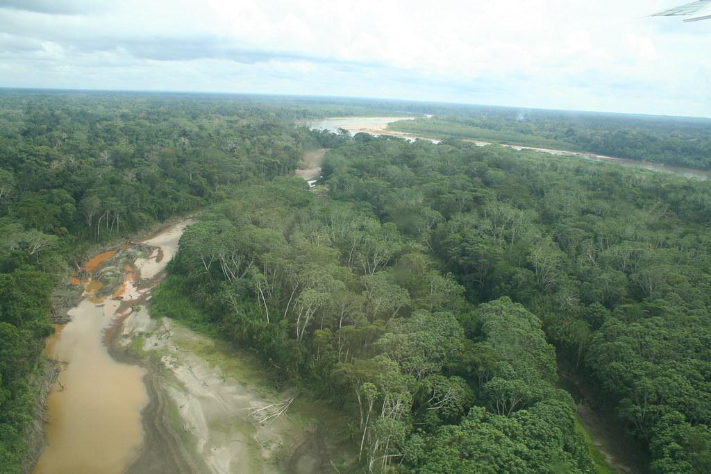 Quand la fumée des feux en Afrique fertilise l'Amazonie