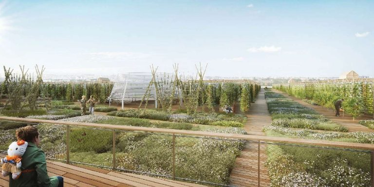 Une ferme urbaine de 14000 m², la plus grande d'Europe, ouvrira à Paris en 2020