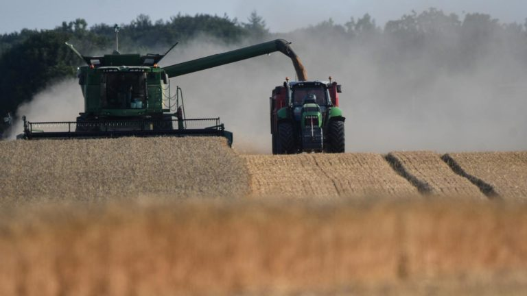 VIDEO. Comment rendre l'agriculture plus éco-responsable ?