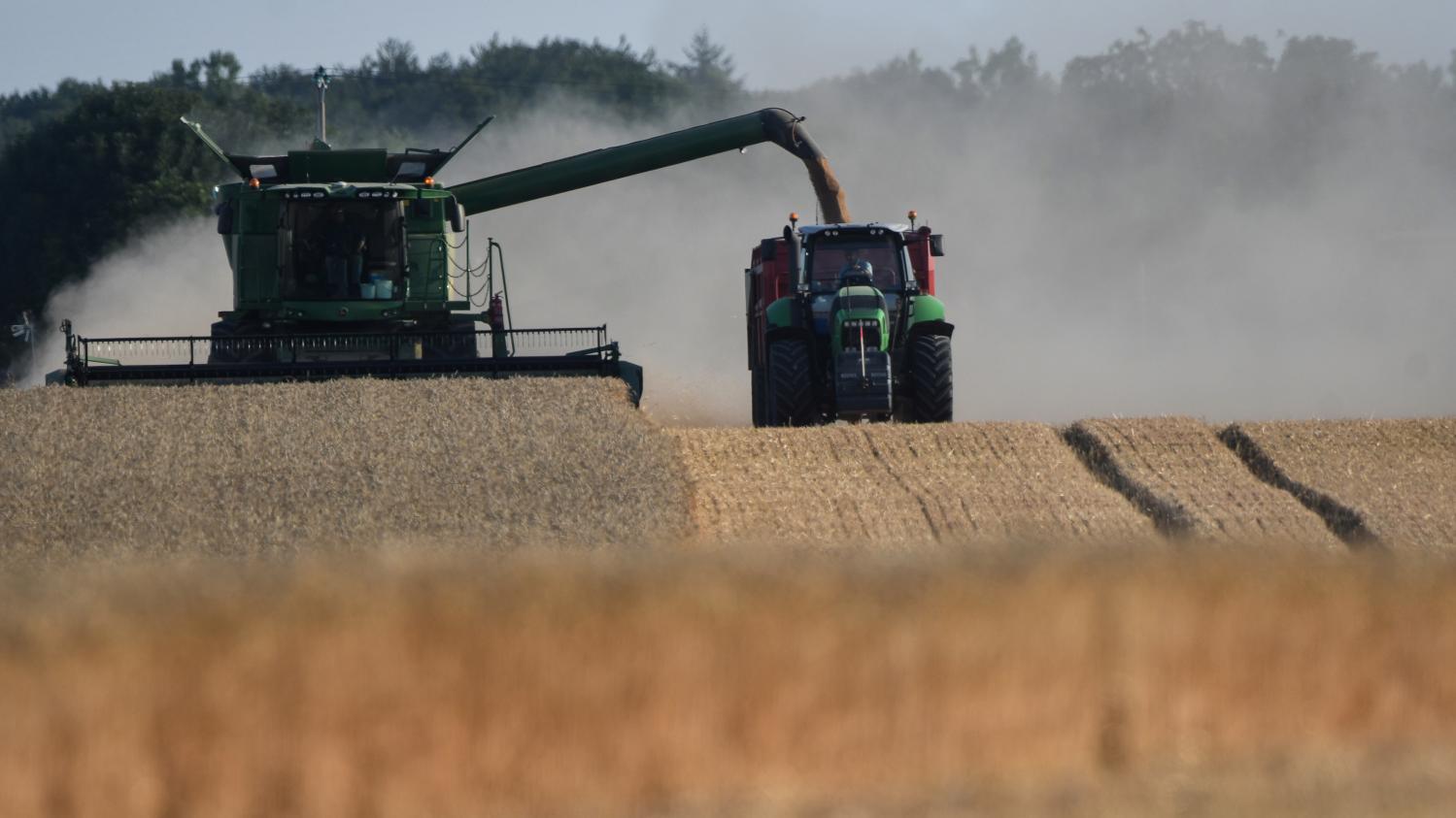 VIDEO. Comment rendre l'agriculture plus éco-responsable ?