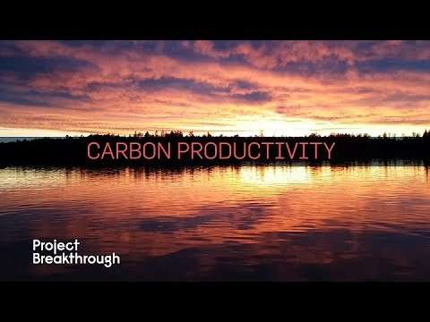 Carbon Productivity