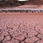 Des mécènes financent la désobéissance civile sur le climat