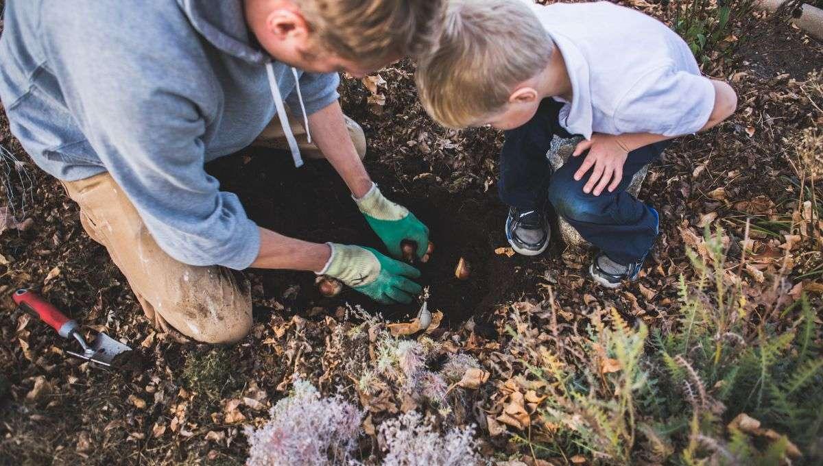 Education : la nature, une source essentielle au bon développement de l'enfant