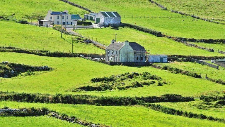 Irlande : un réseau de fermes pour les personnes en situation d'exclusion