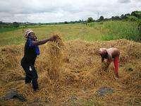 La coopération Sud-Sud, moteur puissant pour la réalisation des Objectifs de développement durable