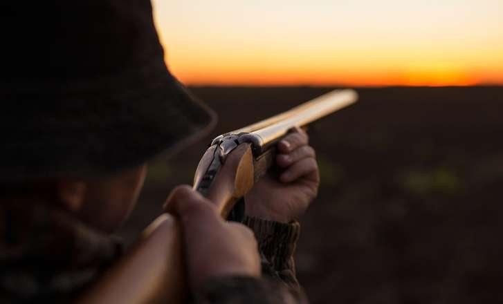 Les Français rejettent massivement la chasse