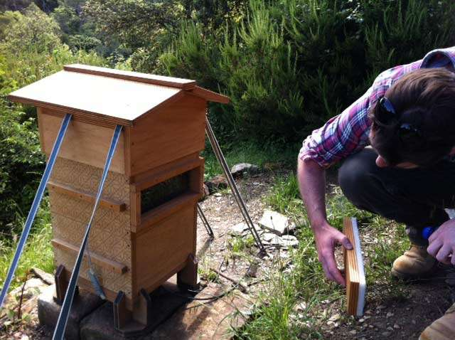 The Open Source Beehives Project – The IAAC