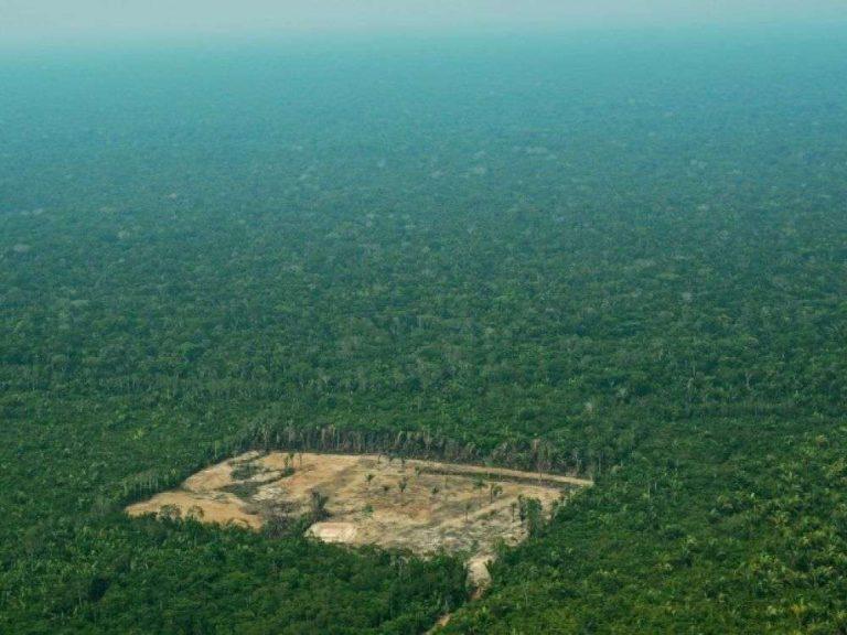 Amazonie: comment l'humanité peut protéger ses «espaces vitaux»