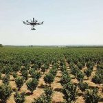 Des robots européens révolutionnent l'agriculture