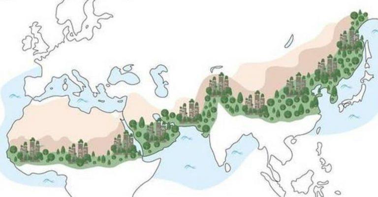 « Les arbres et forêts urbaines peuvent contribuer à réduire la température de l'air de 8°C. »