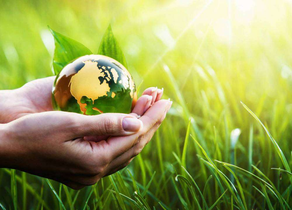 «Transition écologique» dans «Environnement»
