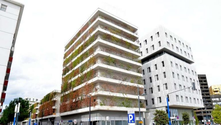 Montpellier : une ville végétalisée pour faire face à la canicule ?