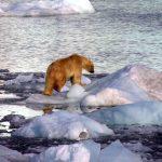 Observation inquiétante, la quantité de chlore augmente en Arctique