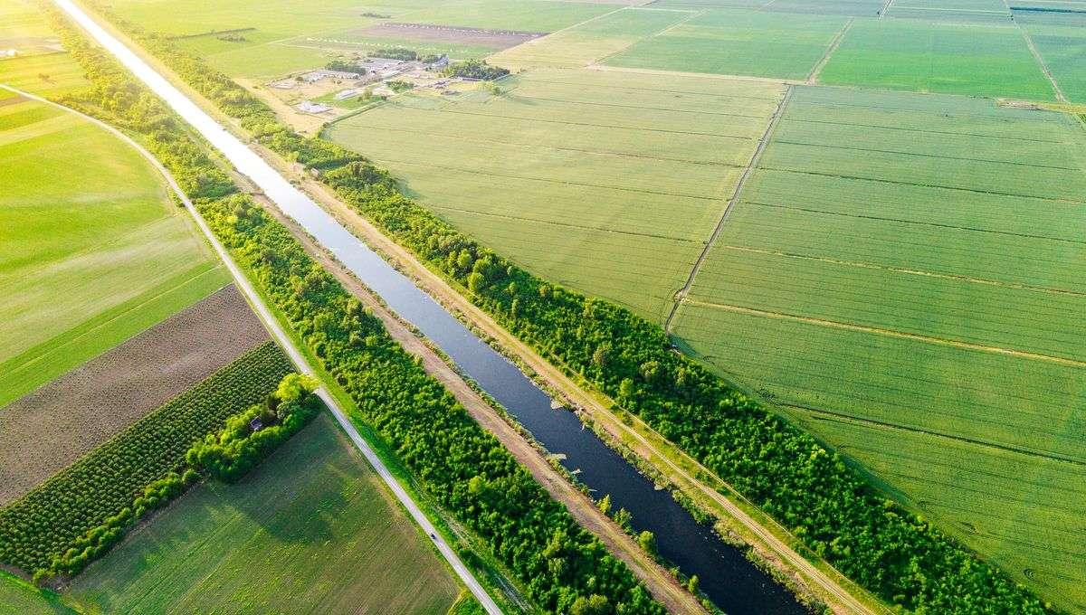 Quel rôle joue la biodiversité dans l'agriculture?