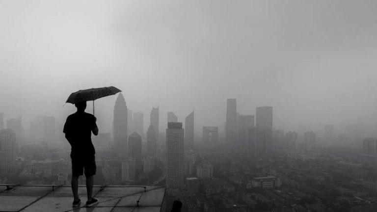 Biodiversité et climat : le capitalisme sauvera-t-il ce qu'il détruit ?