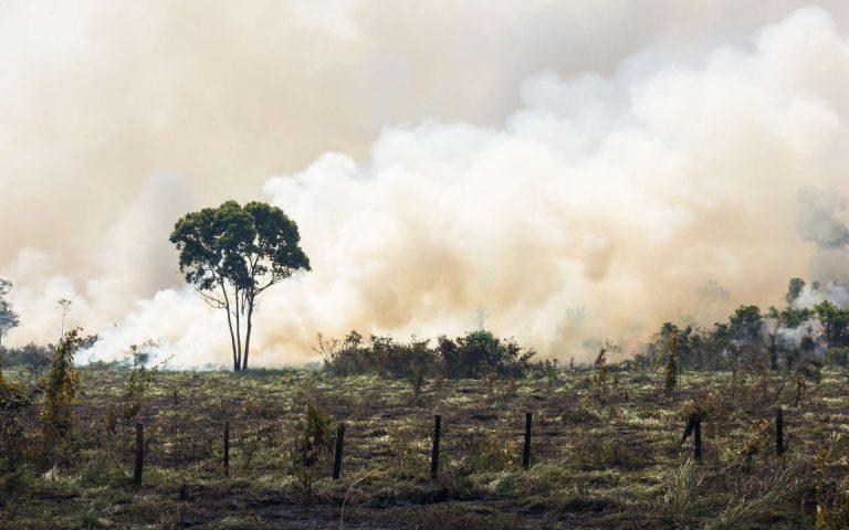 Les activités humaines assèchent l'Amazonie, alerte la Nasa