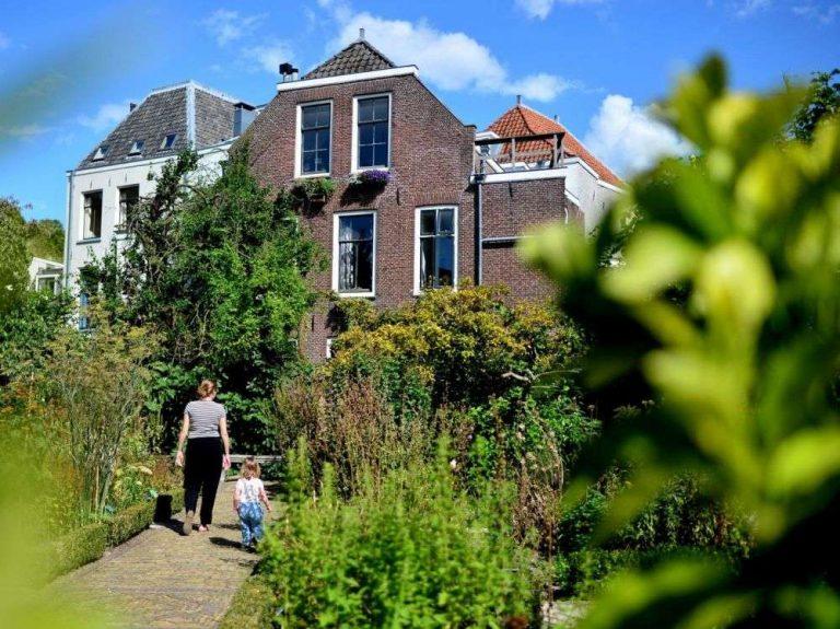 Les espaces verts en ville feraient baisser la mortalité prématurée