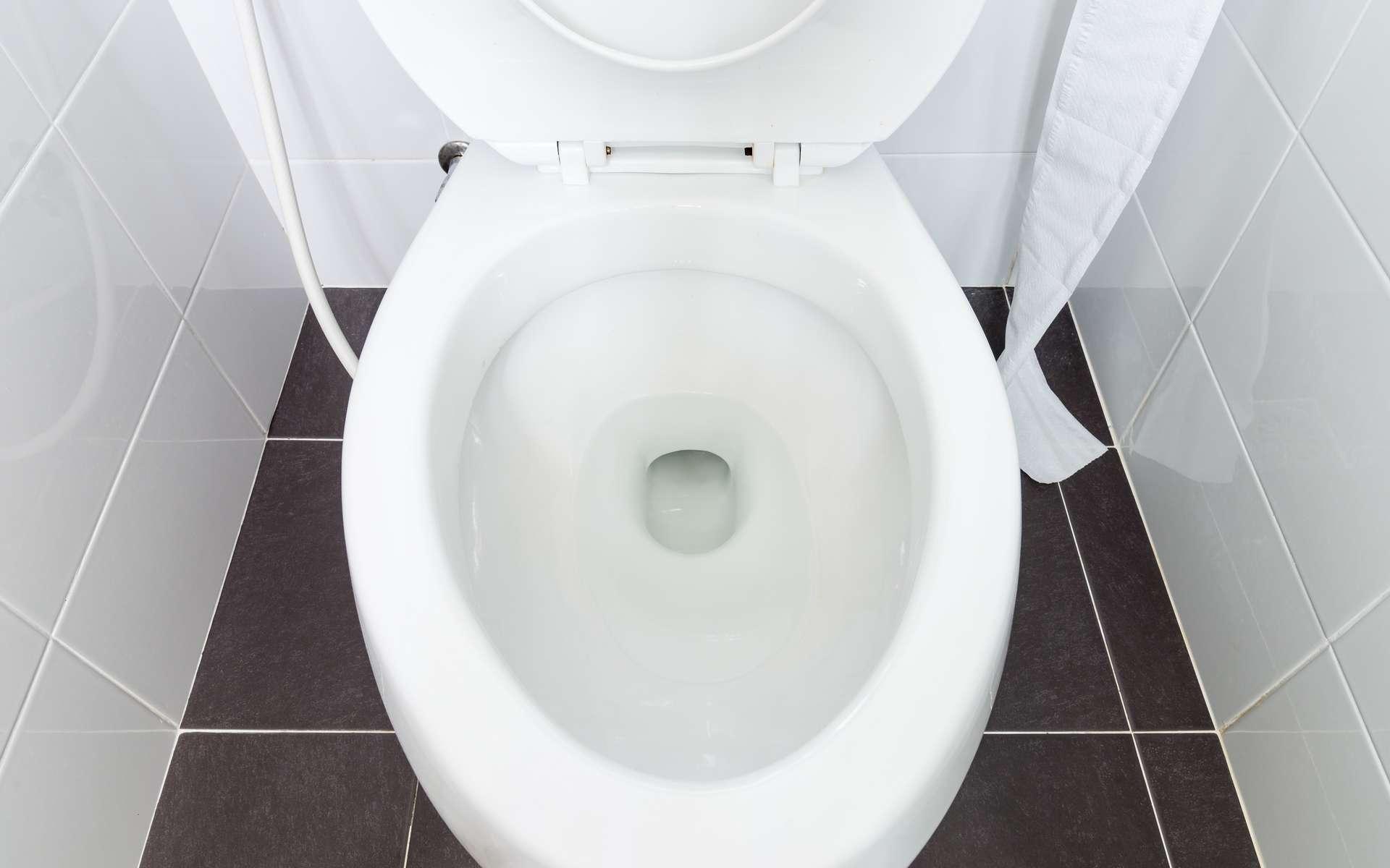 Quand l'intelligence artificielle s'invite aux toilettes