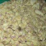 Foie gras en France : des milliers de canetons jetés vivants à la poubelle !
