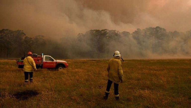 Incendies en Australie : 30 000 personnes en danger, un tiers des koalas décimé