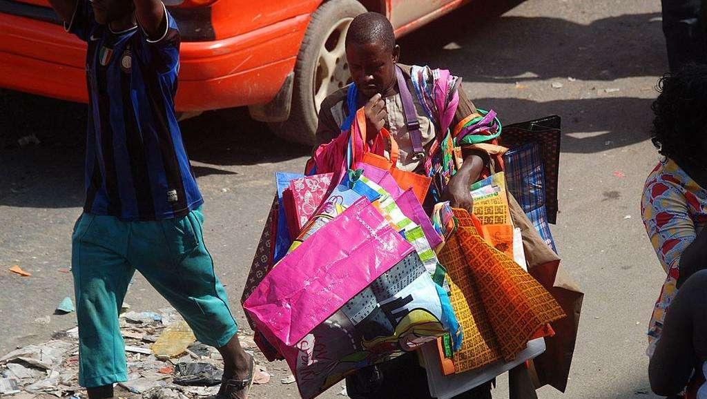 Afrique économie – Sénégal: des plantes pour remplacer le plastique