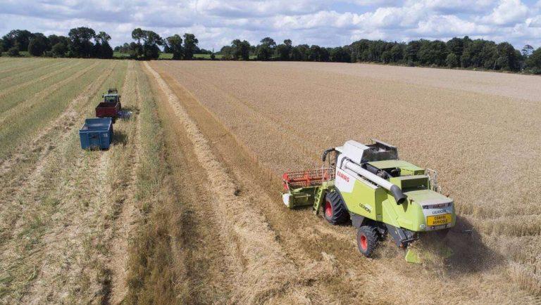 Agriculture. La Bretagne veut tendre vers le zéro pesticide en 2040