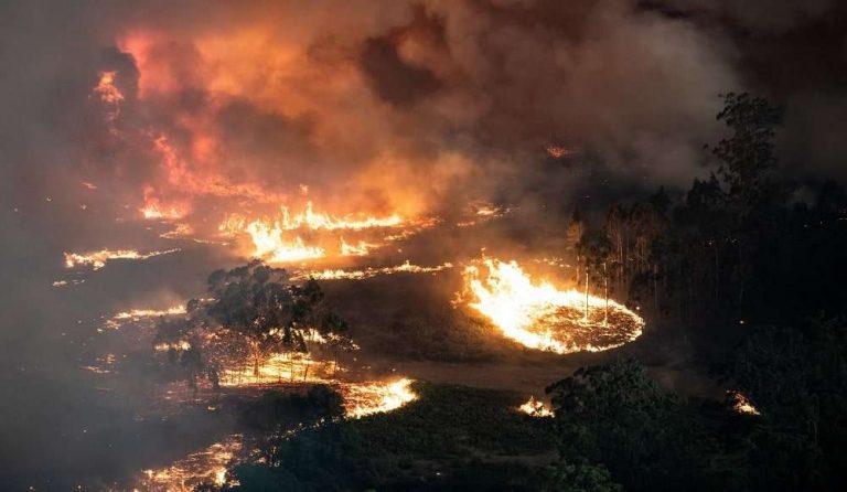Australie : les incendies sont maintenant si importants qu'ils génèrent un micro-climat empirant la situation