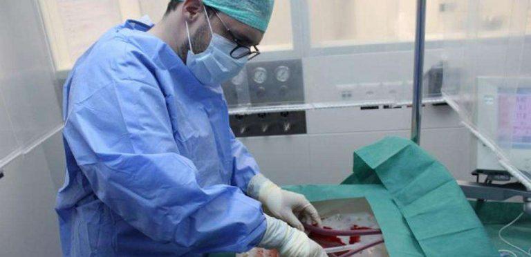 Des foies soignés et maintenus en vie durant une semaine hors du corps humain | Le blob, l'extra-média