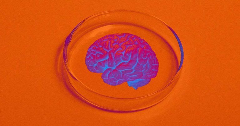 Scientists worried that human brains grown in lab may be sentient
