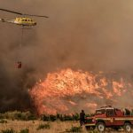 Un concours de circonstances dramatique : quand le changement climatique alimente les feux de forêt, les vagues de chaleur marines et la perte de biodiversité