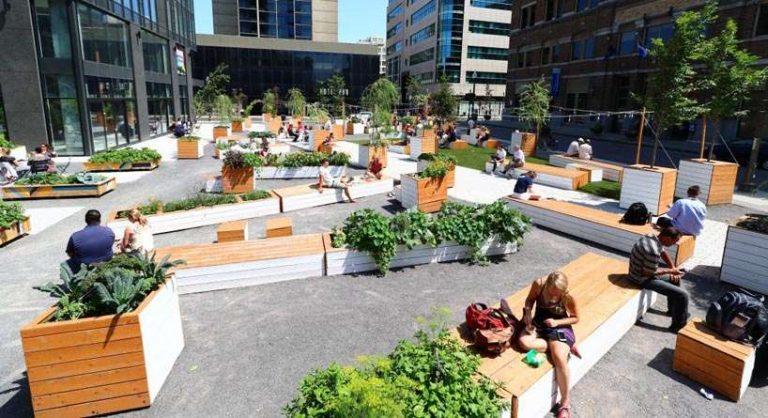Une ferme urbaine à Québec au service des démunis