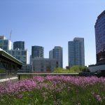 Le forum urbain mondial souligne la nécessité d'un développement durable