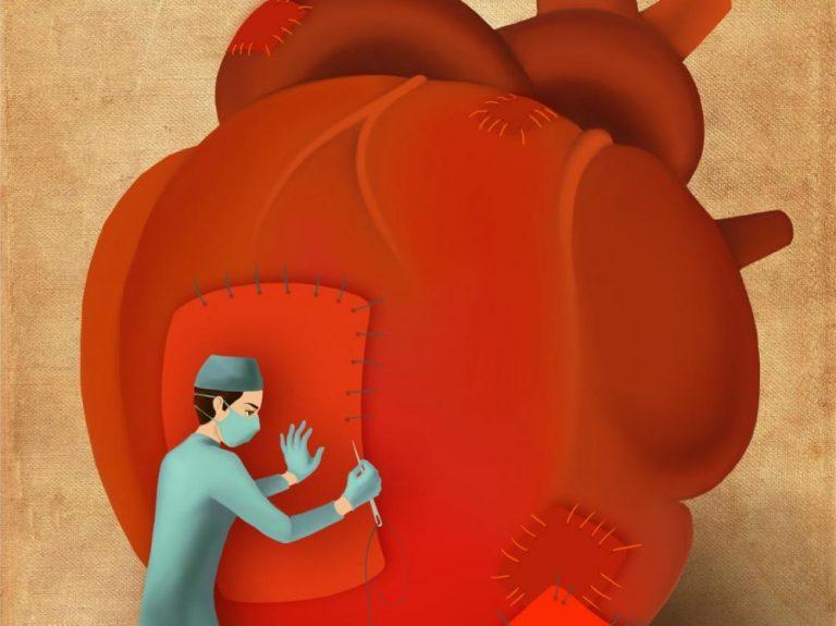 PREMIERE. Des cellules souches induites qui remplacent une greffe de cœur