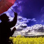 Une clé de la lutte contre le réchauffement climatique : les solutions basées sur la nature