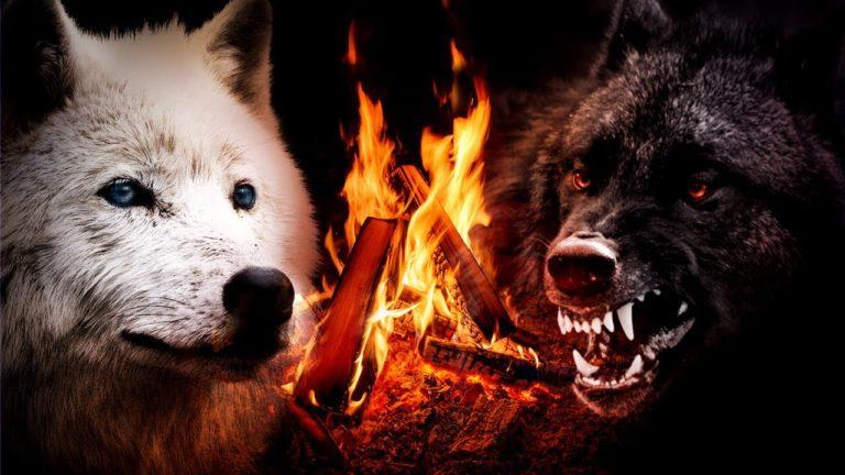 La légende des deux loups : une philosophie pour notre temps – Satyavir