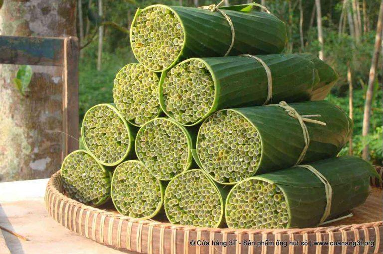 Il fabrique des pailles naturelles et 100% biodégradables avec des d'herbes sauvages
