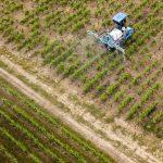 Pesticides : Bayer condamné à verser 265 millions de dollars à un cultivateur