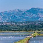 «Zones humides et biodiversité», thème de la Journée mondiale des zones humides 2020