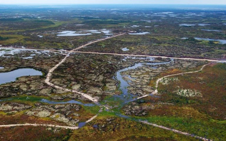 CO2 et virus oubliés : le permafrost est «une boîte de Pandore»