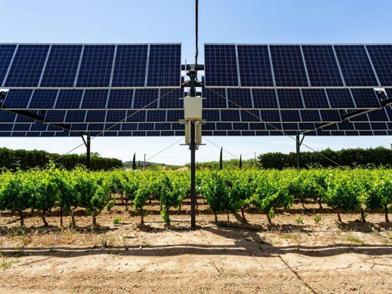 Salon de l'agriculture 2020 : les panneaux solaires au secours de l'agriculture méditerranéenne